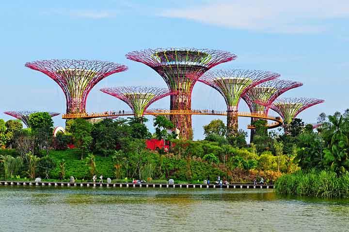 گاردنز بای بی، از جاهای دیدنی سنگاپور