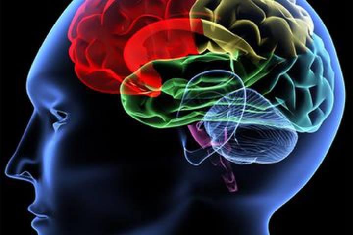 داروهای ضدافسردگی - داروهایی که باعث افزایش سروتونین در مغز می شوند