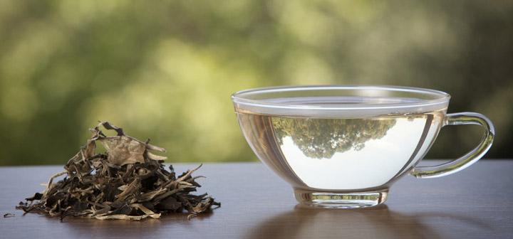پلیفنولهایی مثل اپی گالوکاتچین گالات (EGCG) که در چای سفید به فراوانی یافت میشوند، میتوانند خطر ابتلا و گسترش بیماری پارکینسون و آلزایمر را کاهش دهند.