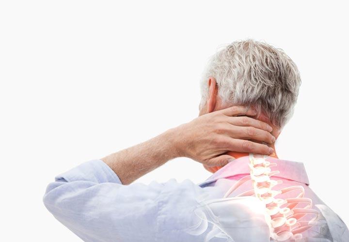 خواص جو - جو به حفظ ساختار استخوان و استحکام آنها کمک می کند.