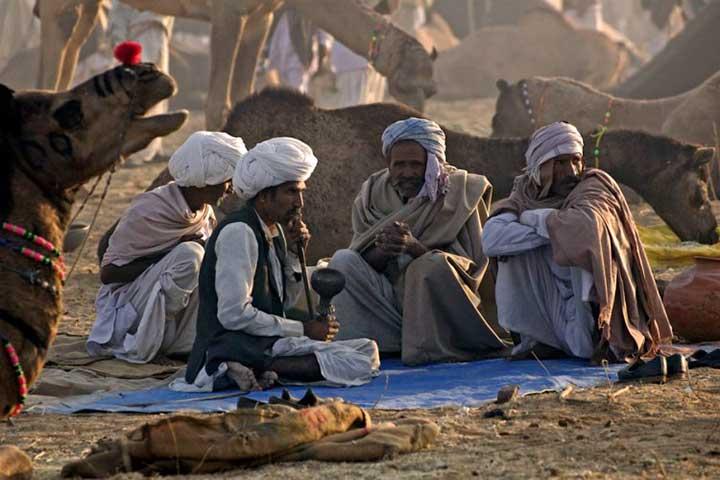 بازار شتر پوشکار و سفر به هند