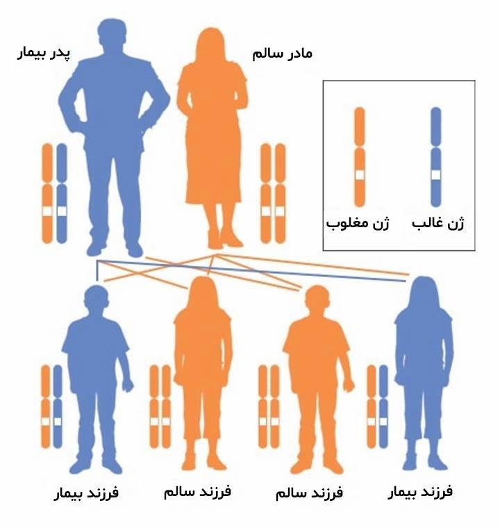 بیماری ای بی - الگوی وراثت اتوزومال غالب