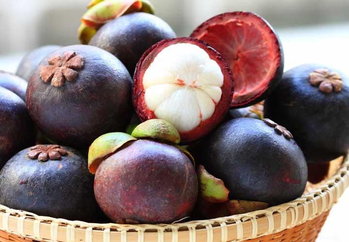 یکی از عجیب ترین میوه ها ترگیل یا مگوستین نام دارد.