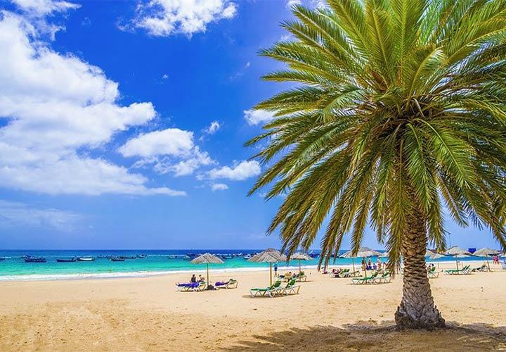 جزایر قناری - سواحل تِنِریفه