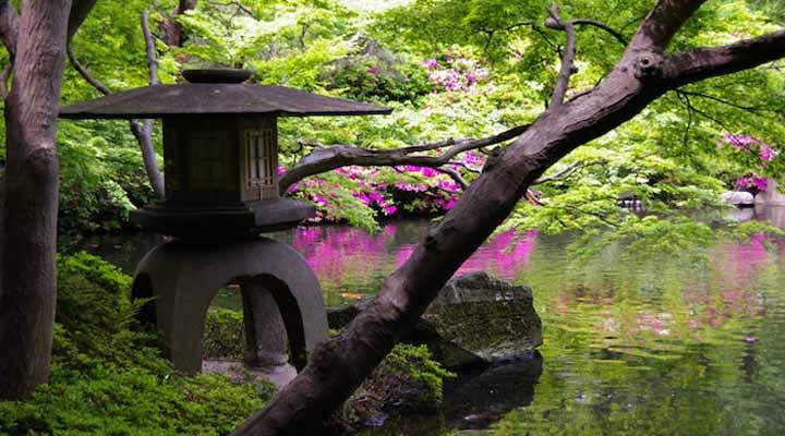 سفر به ژاپن - پارکهای توکیو
