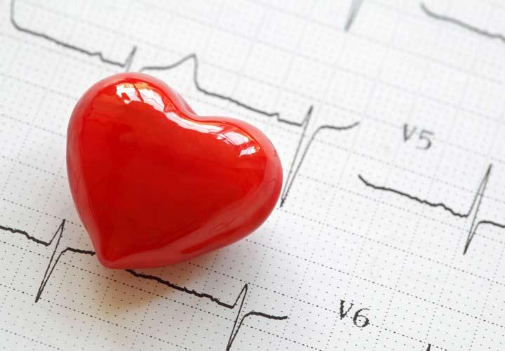 خواص خرفه - چربی های امگا-۳ موجود در خرفه به سلامت قلب کمک می کنند.