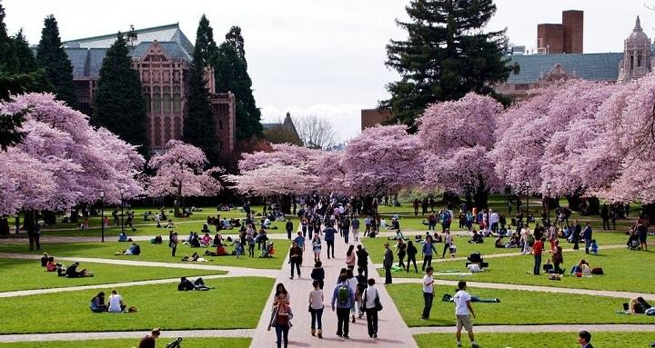 نمایی از دانشگاه واشینگتن یکی از بهترین دانشگاه های جهان