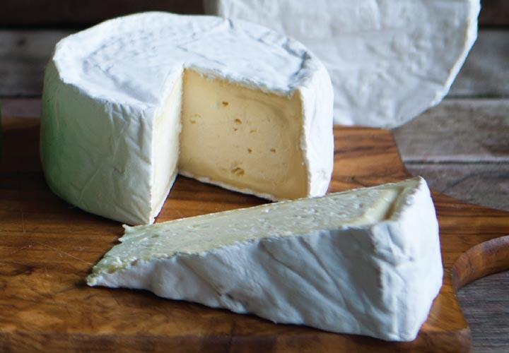 انواع پنیر _ پنیر بِری (Brie)