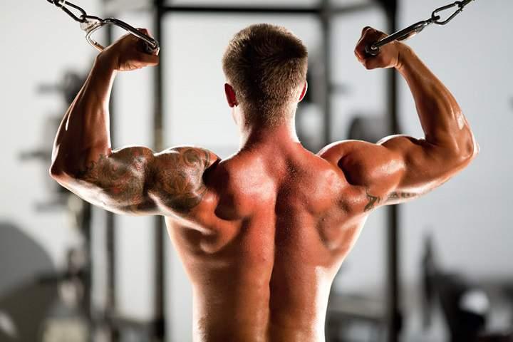 برنامه بدنسازی ۵*۵ باعث افزایش عضله سازی می شود