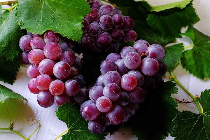 انگور، جذابترین میوه - سالم ترین میوه های جهان