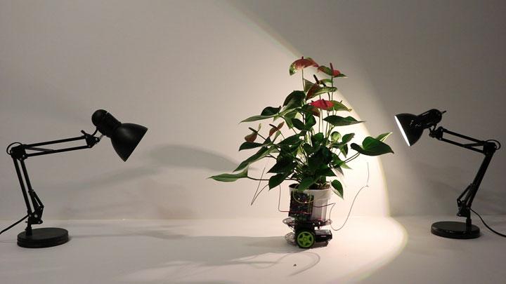 لامپ رشد گیاه - رشته ای