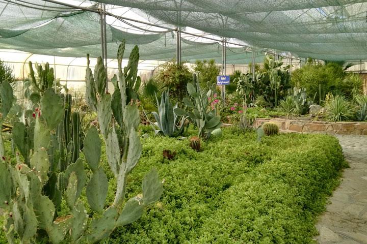 Sights of Kermanshah - Kermanshah Flower Garden