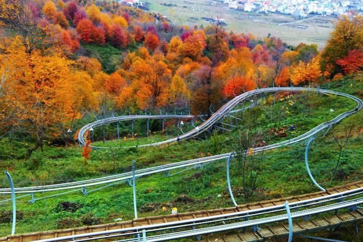جاهای دیدنی تالش - سورتمه سواری در جنگل سیاه داران