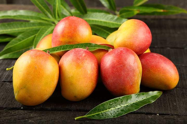 میوه های استوایی - انبه