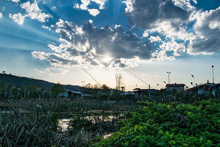 عکس از زهرا شیخایی