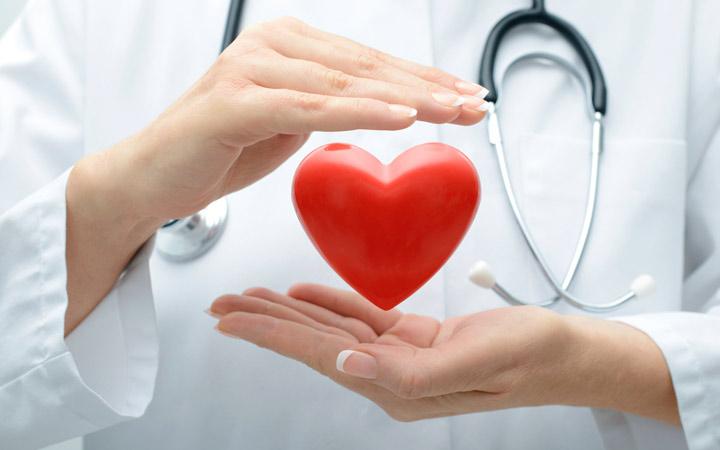 خواص پیازچه - ۴. افزایش سلامت قلب