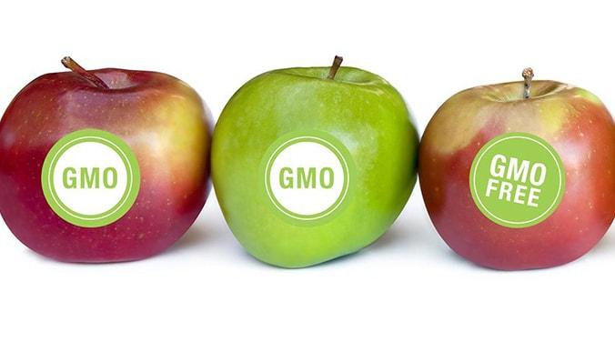 اصلاح ژنتیکی - معنی برچسب روی میوه ها