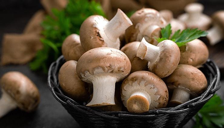 پرورش قارچ در خانه بهصورت قدمبهقدم و نکاتی که باید بدانید