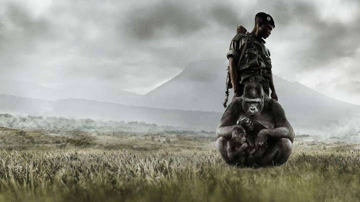 ویرونگا - بهترین فیلم های جنگی
