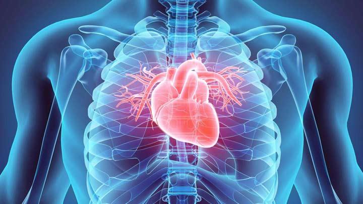 مقاومت به انسولین، بیماری قلبی
