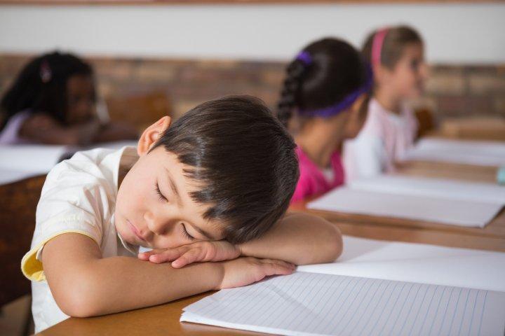 فواید چرت زدن در طول روز برای کودکان - خواب بعد از ظهر