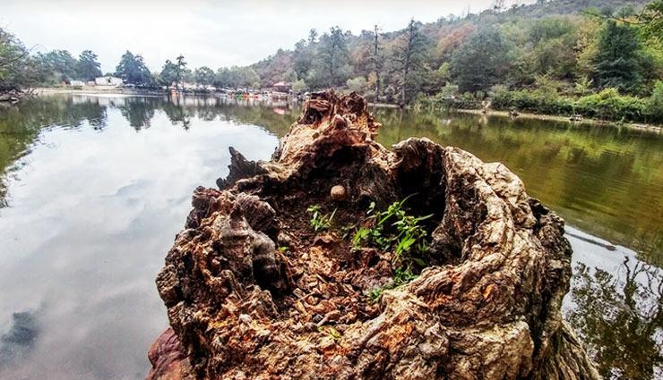 دریاچه شورمست سوادکوه؛ طبیعتی جنگلی در چندکیلومتری تهران