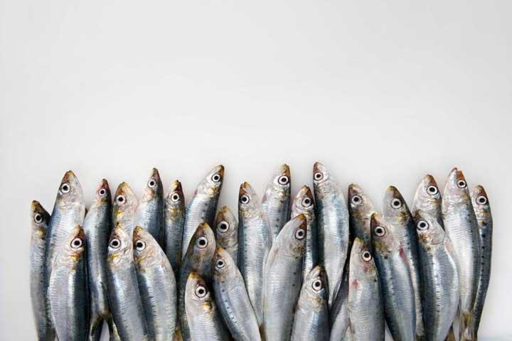 روغن ماهی - امگا۳ و لاغری
