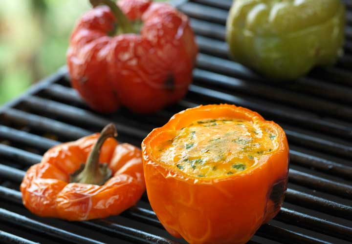 از جمله ۲۰ صبحانه رژیمی خوشمزه برای کاهش وزن می توان به فلفل دلمه ای شکم پر اشاره کرد.