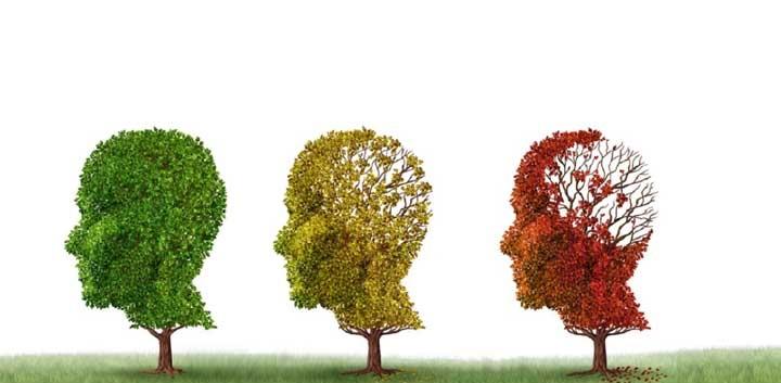 زوال عقل چه تأثیری بر برقراری ارتباط کلامی و غیرکلامی دارد؟