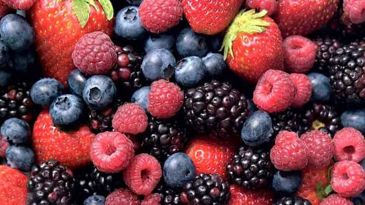 انواع توت در رژیم تابستانی