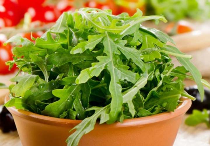 آخر تابستان چه سبزیجاتی بکاریم؟ - یکی از سبزیجات مناسب برای کاشتن در این فصل شابانک است.