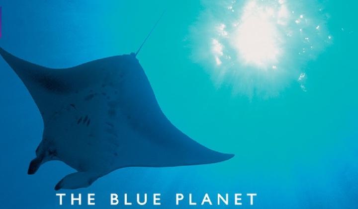سریال مستند سیاره آبی یکی از بهترین سریالهای ساخت انگلیس