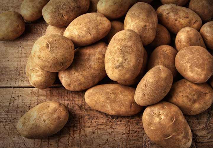 رژیم تک خوری یا رژیم غذایی مونو - در این رژیم تنها باید یک نوع غذا یا یک گروه از غذا مانند میوه ها را در هر وعده روز مصرف کنید.