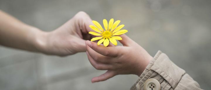 مهربانی یکی از کارهایی که باید تنهایی انجام داد