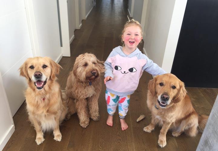 کمک به کودک برای غلبه بر ترس از سگ