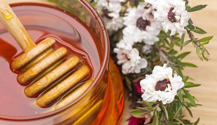 چطور عسل طبیعی را از زنبوردار بخریم؟