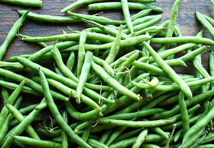 خواص لوبیا سبز - لوبیا سبز منبع خوبی از ویتامین ها و مواد معدنی است.