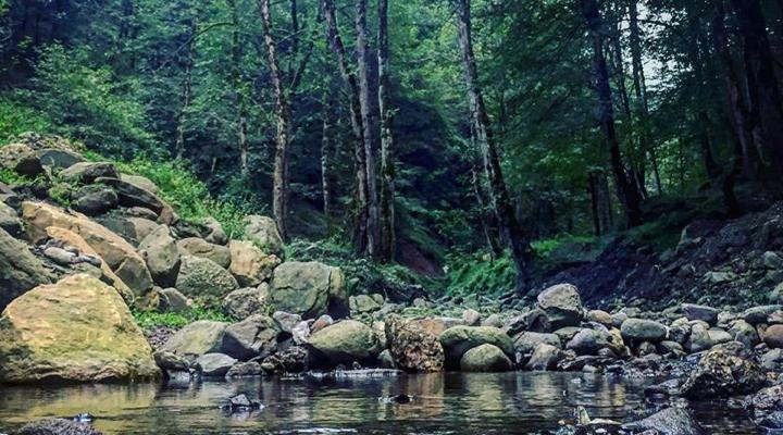 زیبایی مسحورکننده آبشار گزو