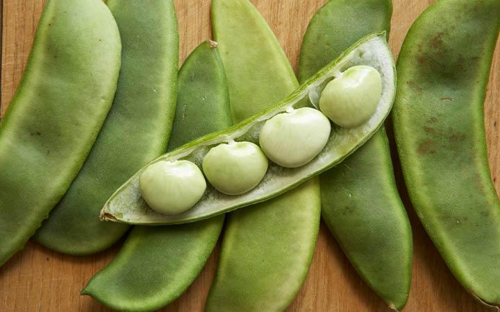 چه خوراکیهایی را نباید بهصورت خام یا نارس بخوریم - لوبیا لیما