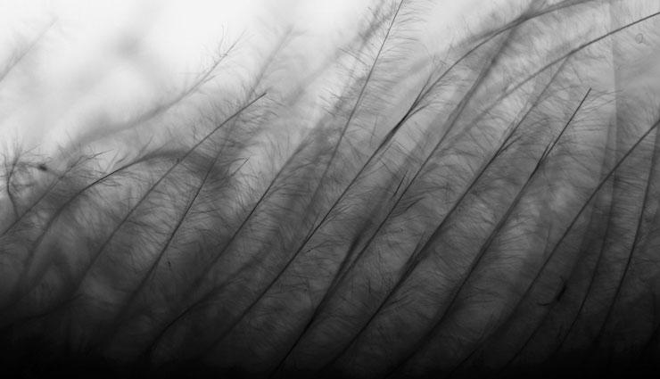 علت ریزش مو در تابستان و روشهای پیشگیری از آن