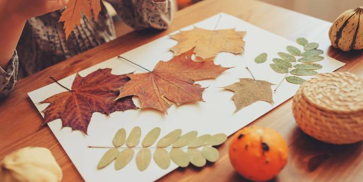 دکوراسیون پاییزی خانه با برگهای خشک و فشرده شده