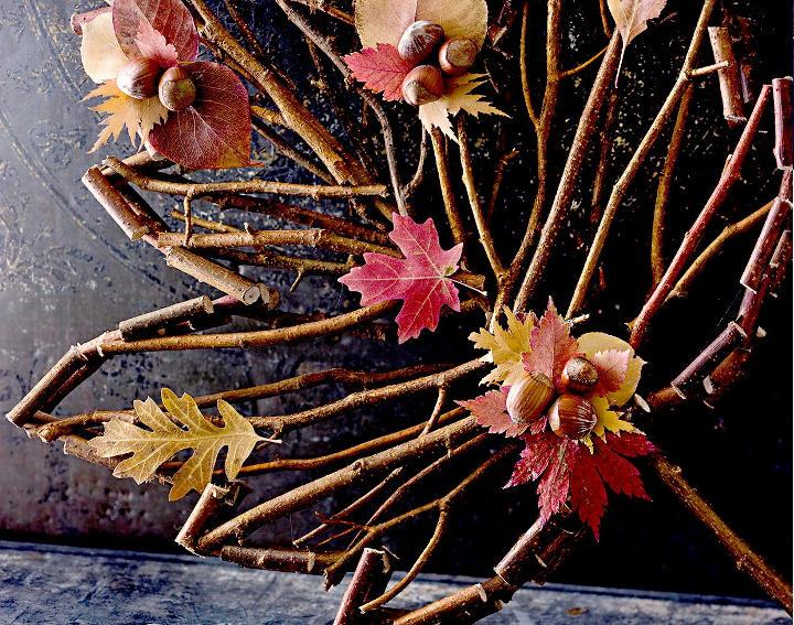 برگ پاییزی با شاخههای درختان