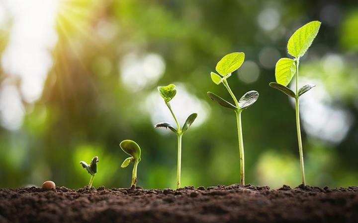 هدف گذاری صحیح در زندگی و اهمیت دستاوردهای کوچک