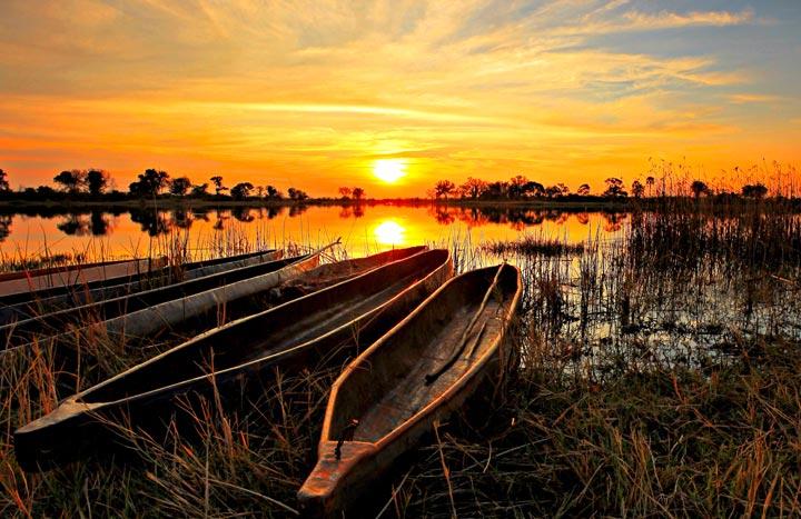 دلتای اوکاوانگو از جاذبه های گردشگری قاره آفریقا