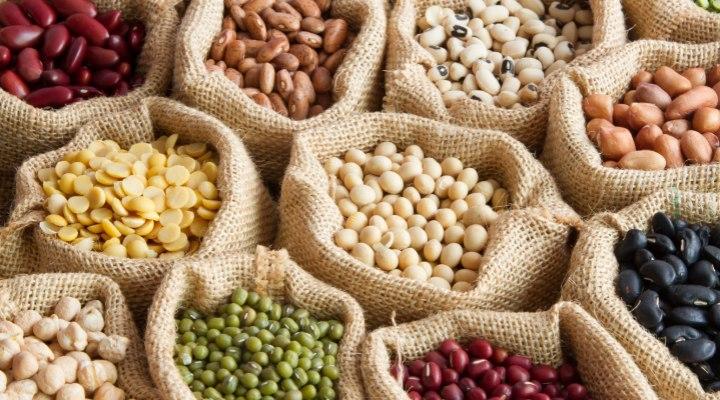 حبوبات هم مثل آجیل و دانههای روغنی منابع خوبی برای تامین پروتئین، فیبر و آنتیاکسیدانهای لازم برای بدن هستند.