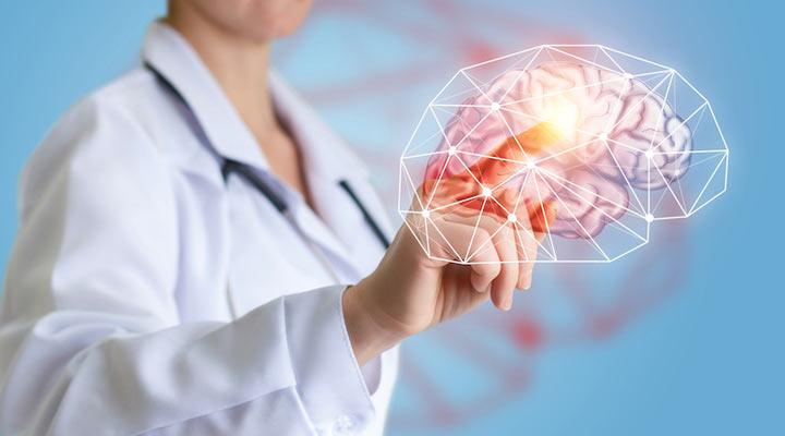 خواص عناب - عناب به سلامت مغز و پیشگیری از آلزایمر کمک می کند.