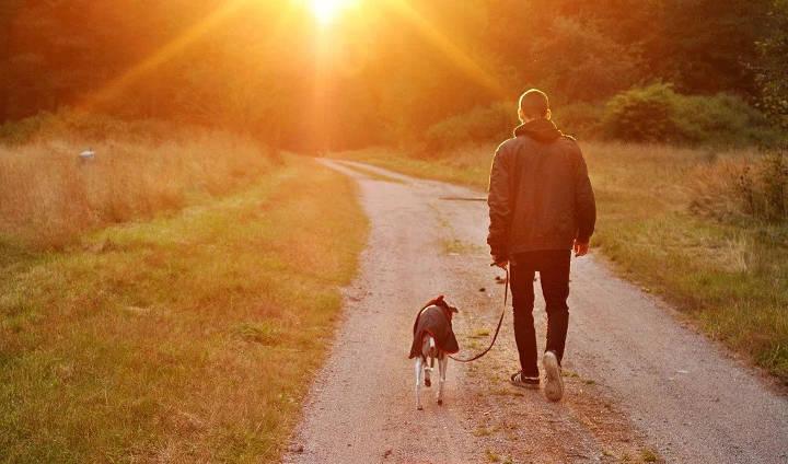توصیههایی برای آنکه بیشتر و بهتر پیاده روی کنید