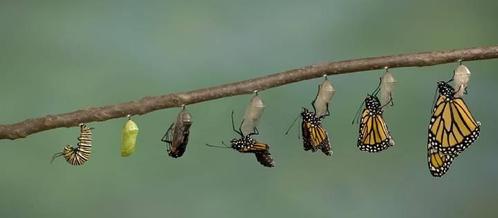 بعد از شناخت علت ترس از تغییر باید به مراحل تغییر فکر کنیم.